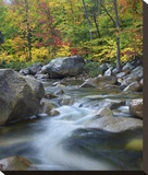 Swift River in fall, White Mountains National Forest, New Hampshire Stretched Canvas Print by Tim Fitzharris