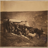 Group of 4th Dragoon Guards Photographic Print