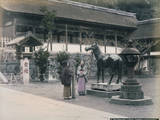 Bronze Horse Temple Nagasaki Photographic Print