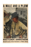 A Mule and a Plow - Resettlement Administration - Small Loan Giclee Print