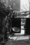 Courtyard of Madame's Trevor Street Studio Photographic Print