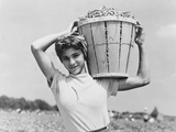 Italian Day Laborer with Basket of Beans She Has Just Picked Photographic Print