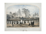 Graves of the Highlanders. Soldiers Cemetery Knoxville, Tenn Giclee Print