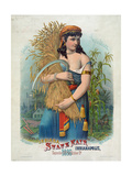 Indiana State Fair Indianapolis September 27th to October 2, 1886 Giclee Print