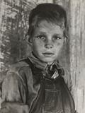 Twelve Year Old Son of a Cotton Sharecropper Near Cleveland, Mississippi Photographic Print