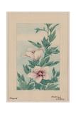 Mokug Althea Giclee Print