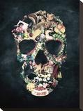 Vintage Skull Impressão em tela esticada por Ali Gulec