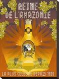 Rein de Lamazone Impressão em tela esticada por Diego Patino