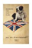WW1 Postcard Bulldog Giclee Print
