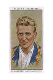 Larwood, Cricketer Giclee Print