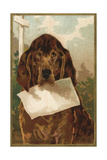 Bloodhound Holding Blank Paper in its Mouth Giclee Print
