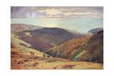 Deer Hunt on Exmoor Giclee Print