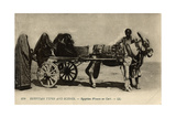 Native Transport in Egypt Photographic Print