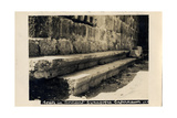 Seats in Byzantine Synagogue, Capernaum, Israel Photographic Print
