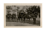 Arab Wedding with Camels, Egypt Photographic Print