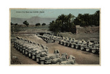 Avenue of Ram-Headed Sphinxes, Temple of Amun, Egypt Photographic Print