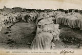Moslems at Prayer, Algiers, Algeria Photographic Print