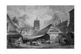 Norwich Giclee Print