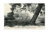 Paris, Notre Dame C1910 Giclee Print