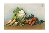Mixed Vegetables 20C Giclee Print