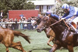 Horse Racing Photographic Print