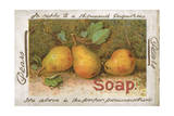 Advert, Pears Soap, Fruit Giclee Print