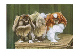 Two Dogs on a Basket Giclee Print