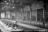 Blackpool Tower Zoo 1900 Photographic Print