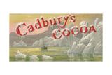 Advert, Cadbury's Cocoa Giclee Print