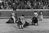 Portuguese Bullfight Photographic Print