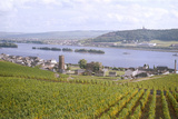 Germany, Rudesheim Photographic Print