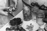 Preserving Plums Photographic Print