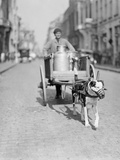 Dog Pulling a Cart Photographic Print