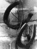 Horseshoes Photographic Print