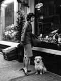 Housewife and Pooch Photographic Print