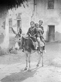 Egyptian Donkey Ride Photographic Print