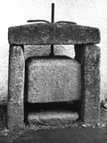 Old Cheese Press Photographic Print