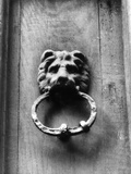 Lion Doorknocker Photographic Print