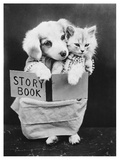 Dog and Cat Reading Photographic Print