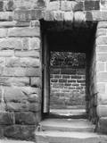 Chester Kale Yard Gate Photographic Print