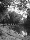 The River Wey Photographic Print