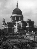 St. Paul's after Blitz Photographic Print