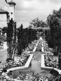 Fountain Row Photographic Print