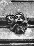 'Toothache' Gargoyles Photographic Print