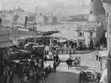 Malta, Valletta Fish 1897 Photographic Print