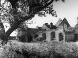 Priory Ruins Photographic Print