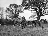 The Tickham Foxhounds Photographic Print