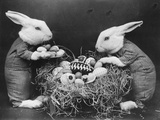 Easter Bunnies and Eggs Fotografisk tryk