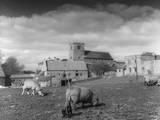 English Village Farm Photographic Print