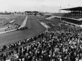 New Zealand Races Photographic Print